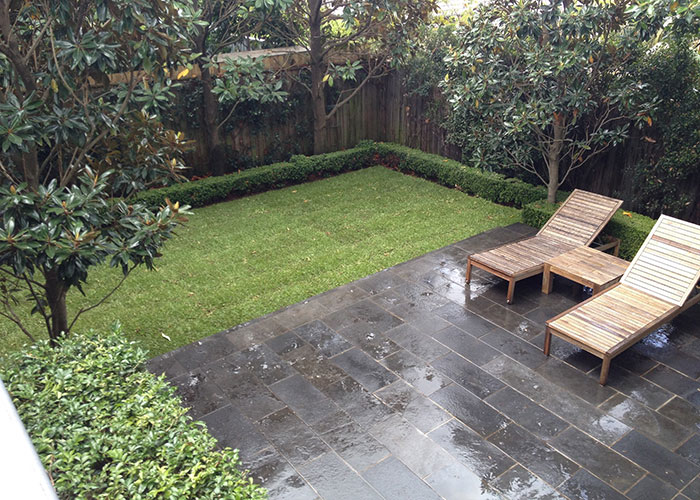 Gardening Services Castle Cove by Northside Tree & Garden Services