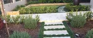 Gardening Services Waverton by Northside Tree & Garden