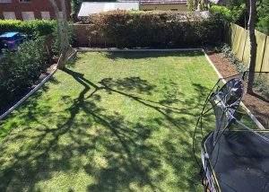 Gardening Services Gladesville by Northside Tree & Garden