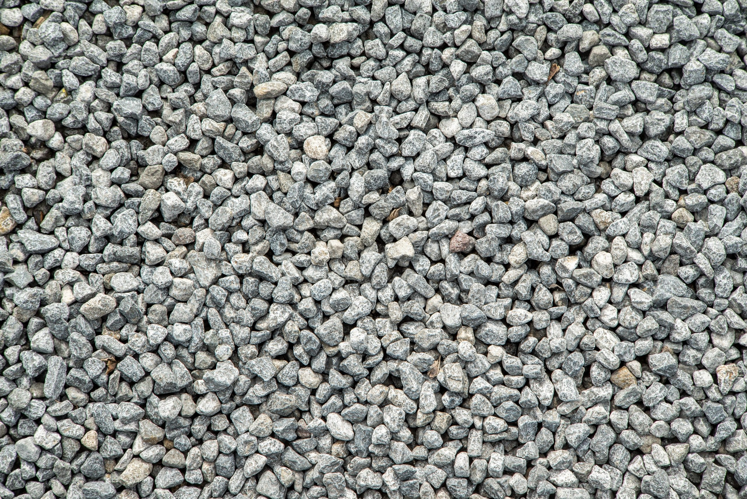 Paving Outdoor Paths Around Your House: Materials to Use