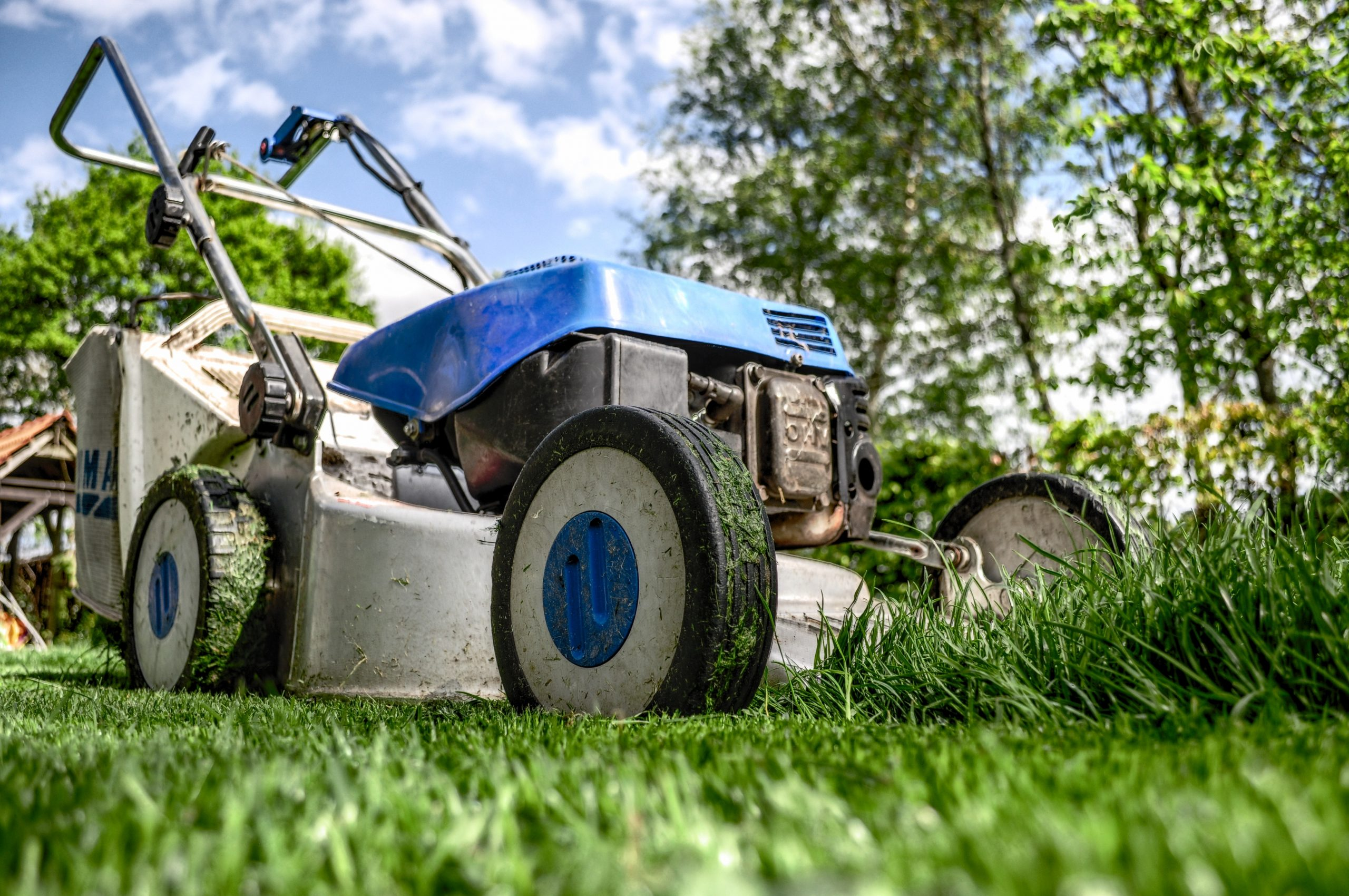 You are currently viewing Landscaping Tools: Which Are the Best for Reducing Noise?