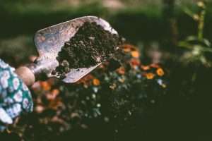 Read more about the article The Different Advantages of Using Soil for Landscaping